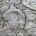 Site géologique de digne - provence