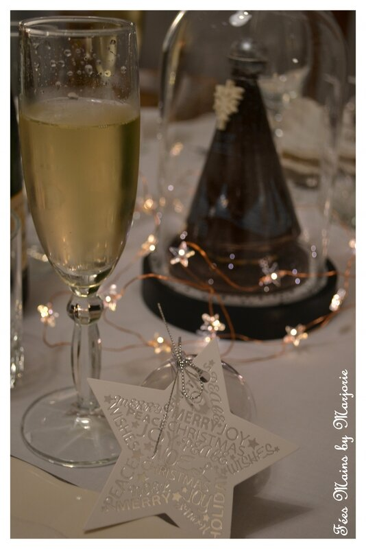 Repas de fêtes 2015