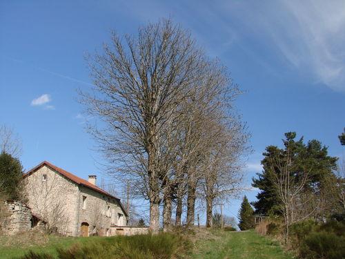 2008 04 26 Un chemin, une maison, un ciel bleu