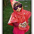 PH2012_10_12-007_lunette_cape_impermeable_poncho_rouge_pois_blanc_tissue_enduit_elmer_pixel_mire_multicolore_carreaux