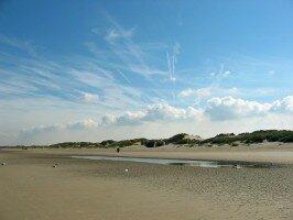 Bray - Dune
