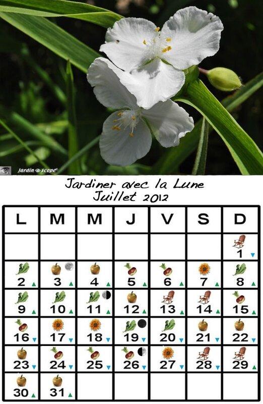 Jardiner avec la lune au mois de juillet 2012 le - Jardiner avec la lune avril 2017 ...