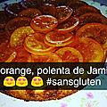 Gateau à l'orange , polenta de jamie oliver #lesfleuronsd'apt