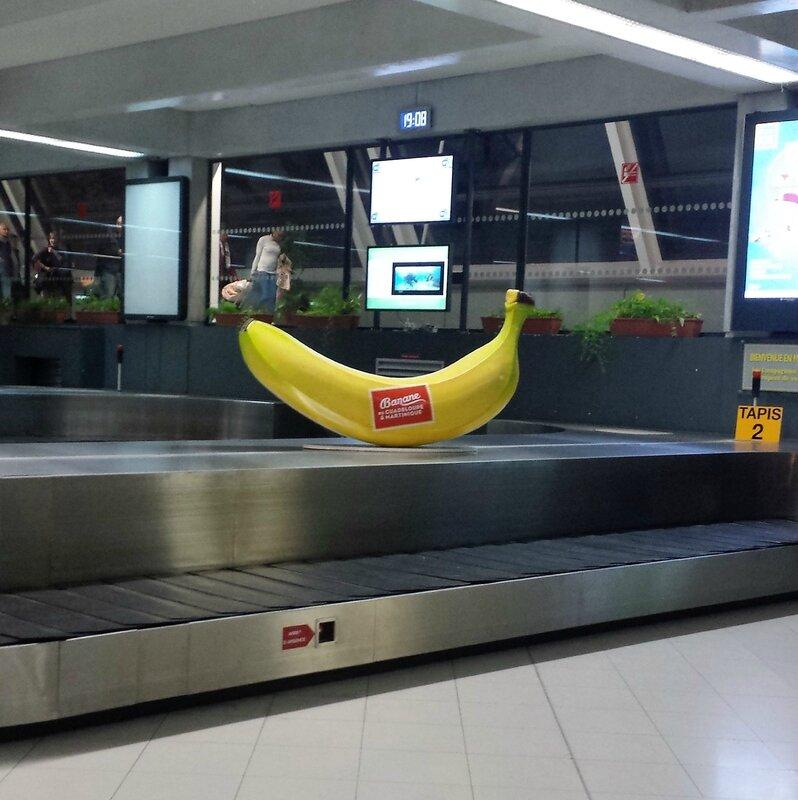 2016 03 08 (14) - arrivée 19h00 aéroport Aimé Césaire Fort de France