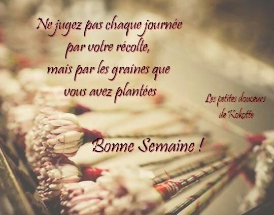 bonne_semaine_041