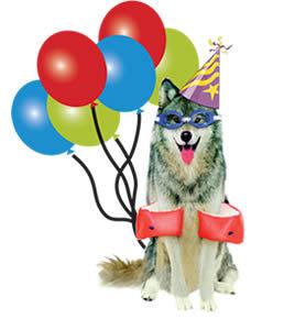 birthday_wolf