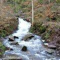 le ruisseau joue un peu