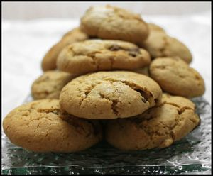 cookies au pralin et 2 chocolats (2)
