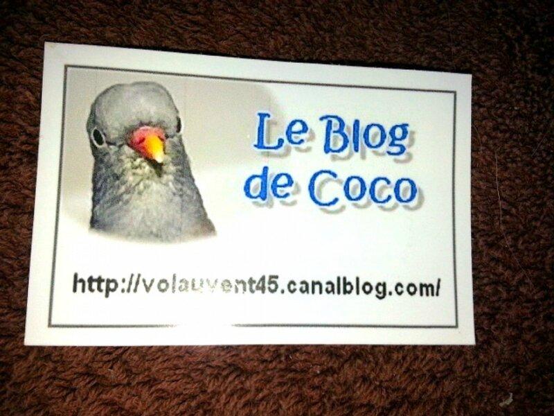 Coco 3 ans 52 jours en Sept 01