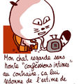 Mon chat n116