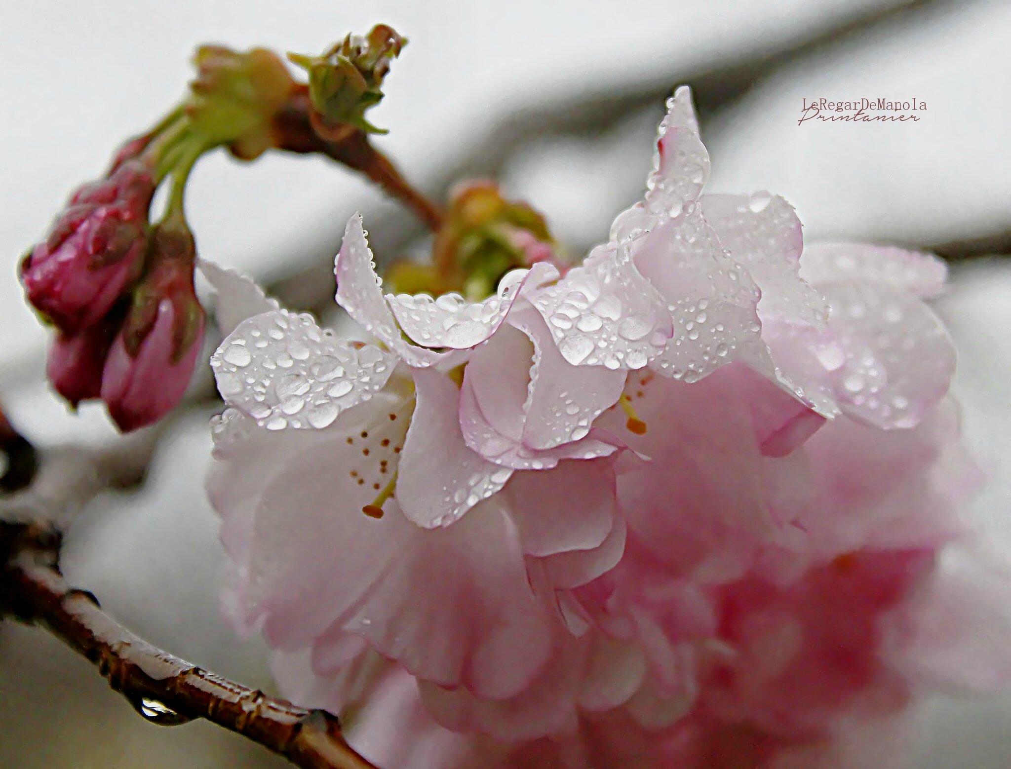 sous la pluie....
