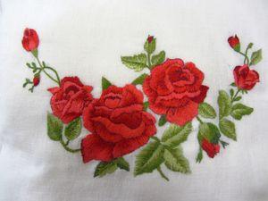la rosa di Paola