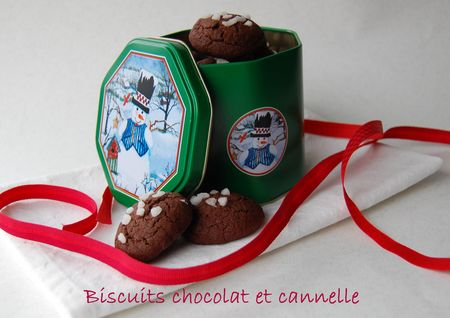 BISCUITS_CHOCO_CANNELLE_2