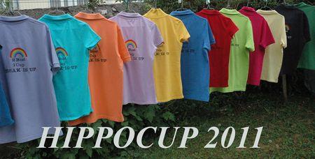 hypocup_20110004_copie
