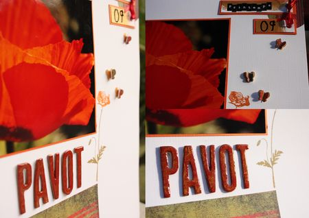 collage_pavot