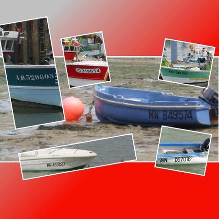 num_ro_de_bateaux