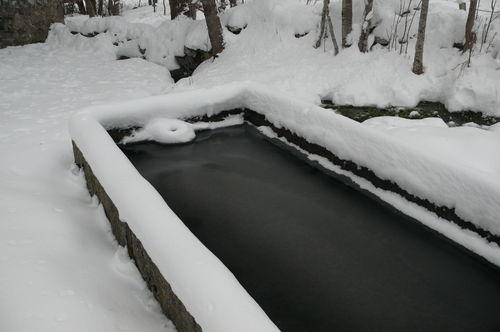 2008 12 13 Le bassin gelé et la neige