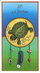 Tortue_Cartes_Animaux_Medecine
