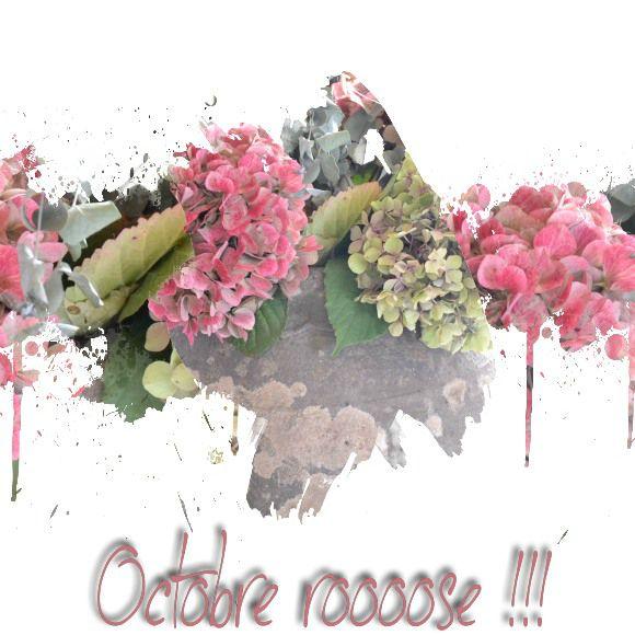 Octobre roooose 2012