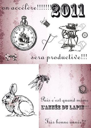 voeux2011_blog