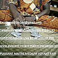 Le fa ,géomancie divinatoire du grand marabout favi