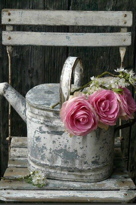 gris et rose3