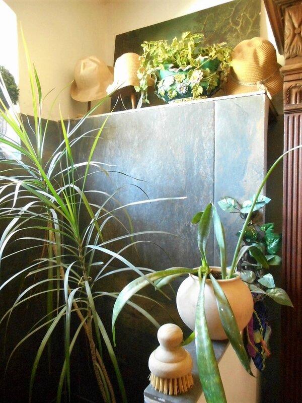 plantes vertes (16)