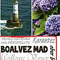 Bloavez mad : attention aux coquilles
