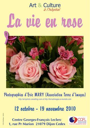 La_vie_en_roseweb