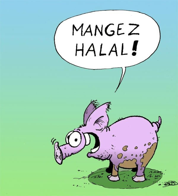 mangez halal