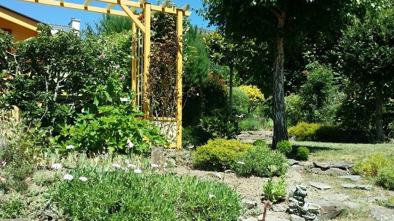 16 07 17 Rocaille apres jardinage 13h53