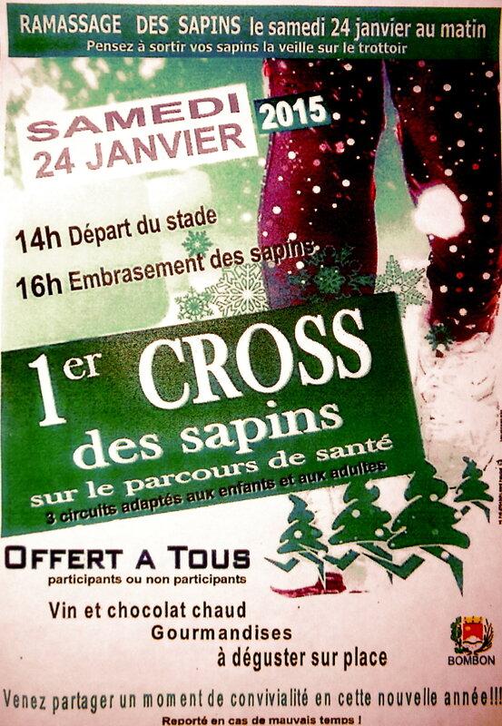 ramassage_des_sapins