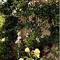 Windows-Live-Writer/jardin_D005/DSCF3912_thumb