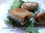 croustillants de saumon et épinard aux saveurs d'ailleurs1