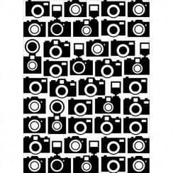 plaque-de-gaufrage-cameras[1]