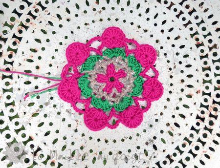 rosace menthe à l'eau 2