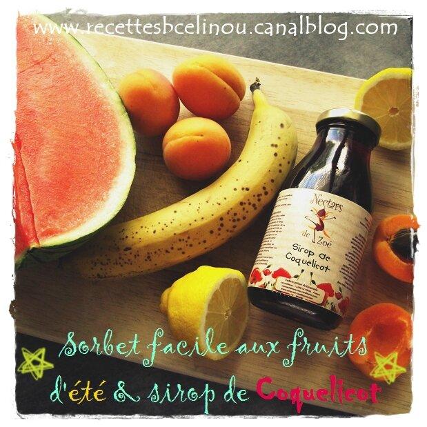 Sorbet facile aux fruits d'été & sirop de Coquelicot (avec mon partenaire Mon Aveyron)