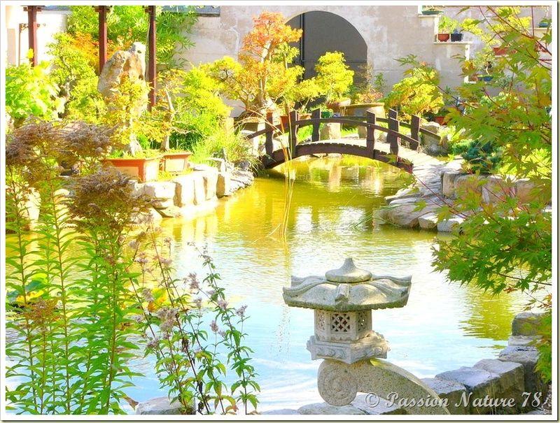 Le jardin Yili (10)