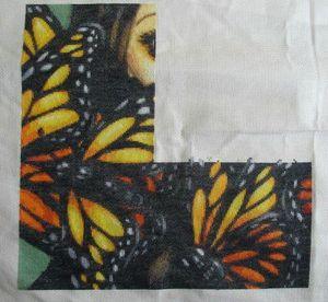 fée papillon 3 et 4