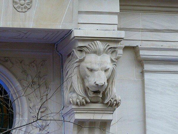 LE lion du CL