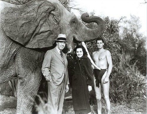 Edgar-Rice-Burroughs-the-creator-of-Tarzan-with-Maureen-OSullivan-and-Johnny-Weismuller