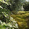 Jardin de vasterival (seine maritime)