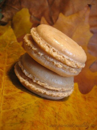 Macarons_chataigne_pomme_2