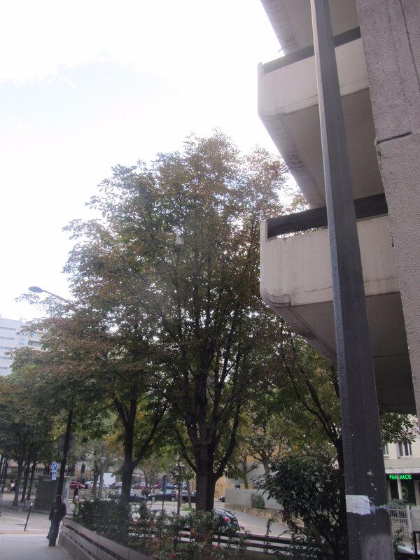 automne 405