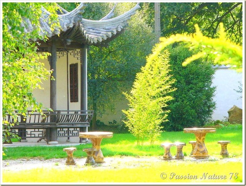 Le jardin Yili (12)