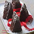 Gâteau au chocolat de noêl