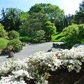 jardin botanique (258).JPG