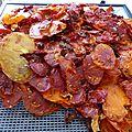 11 aout - tomates séchées....de la poudre concentrée