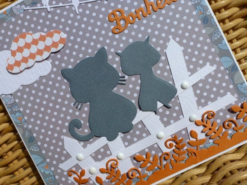Carte-chats-barriere2