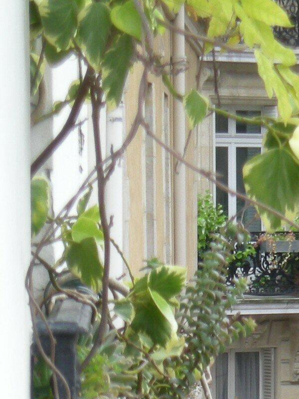 Vue d'une autre fenêtre